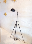 Fusion of  tripod lamp with original Bauhaus shade